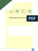 Word Asenecan