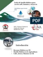 guia para demanda de agua de cultivos ok.pdf