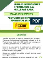 Taller Informativo Ladrillos Lark