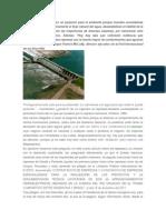 Las Represas y su impacto ambiental