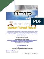 Parashat Qóraj # 38 Adul 6015.pdf