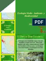 Bosque Seco Ecuatorial 3.9..ppt