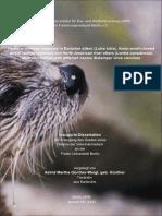 FFFWf.pdf