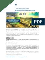Diplomado Gratuito - Gestión en Seguridad Minera y Ambiental