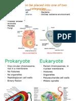 Fisiologia Microbiana Clase 1