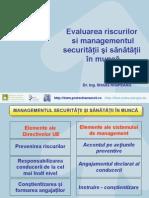 Evaluarea Riscurilor Si Managementul Ssm - Steluta Nisipeanu