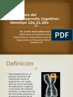 Neurodesarrollo trastornos aprendizaje