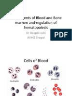 Normal Hematopoesise