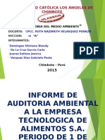 AUDITORIA DEL MEDIO AMBIENTE INFORME FINAL..ppt