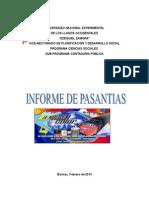 Informe de Pasantias-YELI 2013