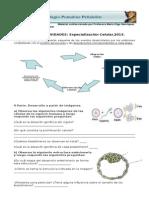 Gi Especializacion Celular 2013
