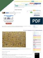 http-__salud_facilisimo_com_blogs_nutricion_9-alimentos-para-aumentar-masa-muscular_1269522_html-aco=1bf7&fba