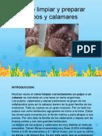 Limpieza y Coccion Del Pulpo
