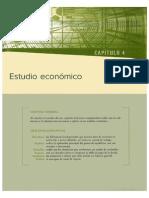 Analisis Economico de Un Producto