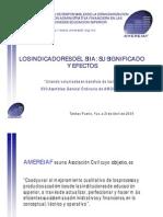 AMERIAF.pdf