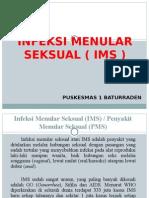 PPT_IMS