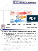 Metabolismo Carbonado