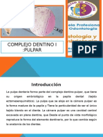 Pulpa Dental (1)