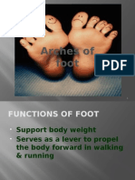 Arches of Foot PP