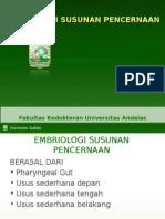 2.6.1.2 - embriologi_susunan_pencernaan