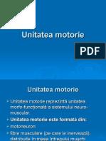 Unitatea motorie