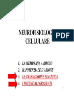 POT-SINAPTICO 2015.pdf