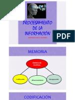 Procesamiento de la información 44