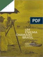 Um Enigma Chamado Brasil Org Botellho a e Schwarcz LM André Reb0001