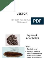 praktikum vektor.ppt