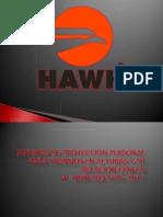 EXPO SEG STPS HAWK .pdf