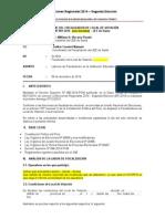 Modelo de Informe de Flvs JNE peru