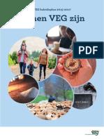 VEG-Beleidsplan 2015