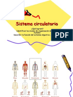 ppt sistema circulatorio.ppt