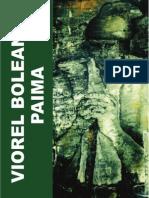 Viorel Boleantu Paima