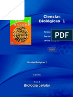 Cap3-Biologia Celular B