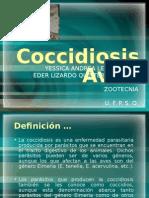 coccidiosisaviar-110521204432-phpapp02