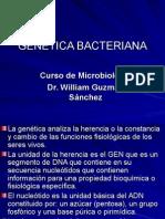GENETICA Bacteriana Actual