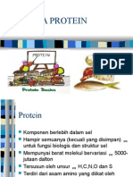 Analisa Protein