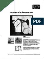 CIED - Daño a La Formación y Estimulación de Pozos