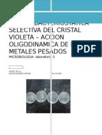 Acción Bacteriostática Selectiva Del Cristal Violeta