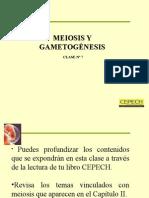 Meiosis_y_gametogenesis.ppt
