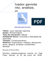 Juan Salvador Gaviota Argumento
