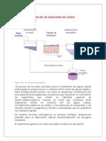 Descripcion de Un Diagrama de Lodos Activado1
