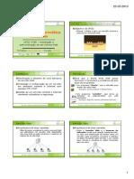 788 Servidores Web - Diapositivos