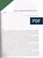 CRÍTICA SOCIOLÓGICA