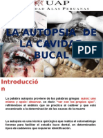 Forense autopsia bucal