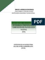 Estudio Esertificacion en Nicaragua