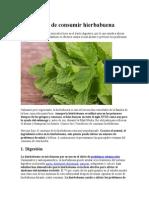 5 Beneficios de Consumir Hierbabuena