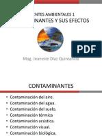 Contaminantes y Sus Efectos