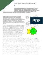 La Pesca A N.. Segunda Parte, Indicadores, Canitas Y Patrones De Ninfas.